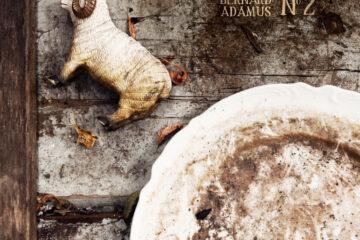 Bernard Adamus - No.2 Cover